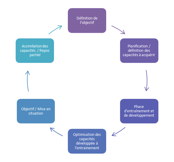 Schéma de ma vision de la planification